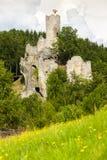Rovine del castello di Frydstejn Fotografia Stock