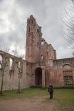 Rovine del castello di Limburgo Fotografia Stock