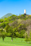 Rovine del castello di Skalka Fotografia Stock Libera da Diritti