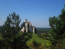 Rovine del castello in Polonia fotografia stock libera da diritti