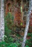 Rovine del fonditore del ferro di Tulmozersky Fotografie Stock