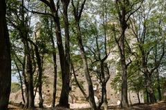 Rovine del monastero Katarinka sopra il villaggio di Dechtice, Slov Immagini Stock
