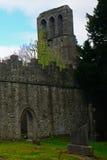 Rovine del monastero, Malahide, Irlanda fotografia stock libera da diritti