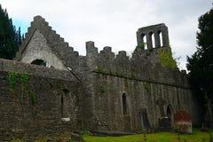 Rovine del monastero, Malahide, Irlanda fotografie stock libere da diritti