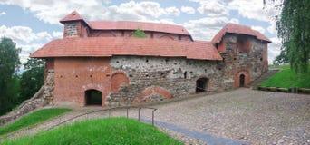 Rovine del palazzo del castello di Gediminas Immagine Stock Libera da Diritti