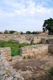 Rovine del pavimento di mosaico della città romana a Paestum Immagini Stock