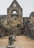 Rovine dell'abbazia di Tintern, una precedente chiesa in Galles Fotografia Stock