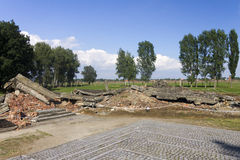 Rovine della camera a gas 3 a Auschwitz II-Birkenau Fotografie Stock