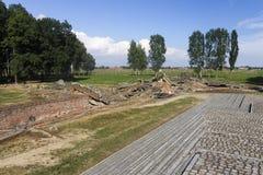 Rovine della camera a gas 3 a Auschwitz II-Birkenau Immagine Stock Libera da Diritti