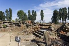 Rovine della camera a gas 2 a Auschwitz II-Birkenau Fotografie Stock Libere da Diritti