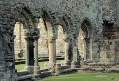 Rovine della cattedrale della st Andrews Fotografie Stock