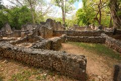 Rovine della città africana antica Gede Gedi in Watamu, Kenya fotografia stock libera da diritti