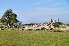 Rovine della città romana a Paestum Fotografia Stock