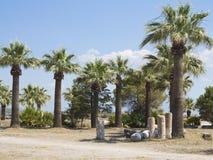Rovine delle colonne del tempio antico, delle palme e del cielo blu Fotografie Stock