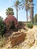Rovine delle strutture egiziane dei periodi del faraone Ramesses II, scavo Jaffa, Israele fotografia stock libera da diritti