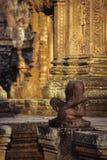Rovine di Angkor Wat del tempiale di Banteay Srei, Cambogia Fotografie Stock