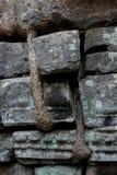 Rovine di Angkor Wat dettagliatamente Fotografia Stock