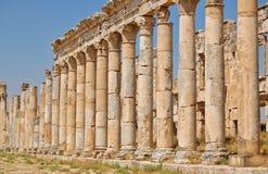 Rovine di Aphamia, Siria Fotografia Stock