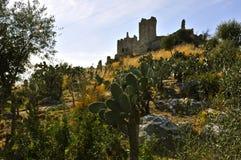 Rovine di Cirella, Cosenza, Calabria Fotografia Stock