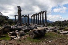 Rovine di Euromus in Mugla Turchia Fotografia Stock