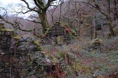 Rovine di pietra del cottage Fotografie Stock