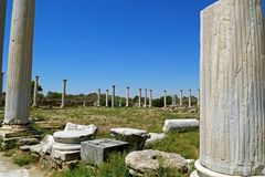 Rovine di Romani della città dei salami, vicino a Famagosta, il Cipro del Nord Immagini Stock