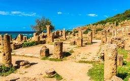 Rovine di Tipasa, un colonia romano in Algeria, Nord Africa immagine stock libera da diritti