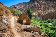 Rovine di una casa abbandonata al fondo del canyon di Colca nel dipartimento di Arequipa, Perù del sud Fotografia Stock