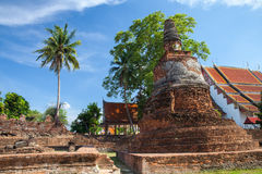 Rovine di Wat Phra Si Sanphet, Ayutthaya Fotografia Stock