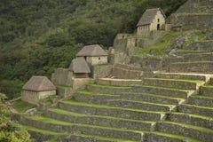 Rovine Machu interno Picchu fotografie stock libere da diritti