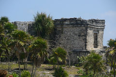 Rovine maya immagine stock