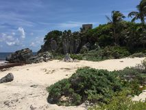Rovine maya antiche vicino all'oceano in Tulum, Messico immagine stock libera da diritti