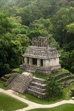 Rovine maya di Palenque - il Chiapas - Messico immagine stock libera da diritti