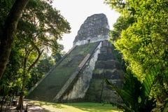 Rovine maya postali a Tikal, parco nazionale Il Guatemala di viaggio, Fotografie Stock Libere da Diritti