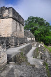 Rovine maya a Tikal, Guatemala Immagine Stock