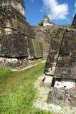 Rovine Mayan antiche Fotografia Stock Libera da Diritti