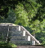 Rovine Mayan, Copan, Honduras Fotografia Stock