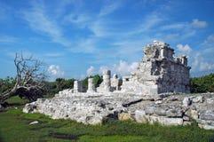 Rovine Mayan deteriorate vicino alla spiaggia Fotografia Stock