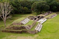 Rovine Mayan di Altun ha Fotografie Stock Libere da Diritti