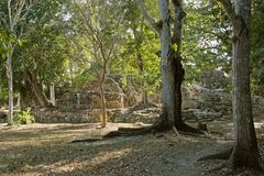 Rovine maya di Chicanna Immagini Stock