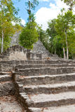 Rovine Mayan di Coba nel Messico Immagine Stock Libera da Diritti