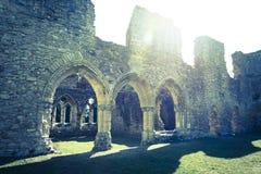 Rovine medievali della chiesa, abbazia di Netley, Inghilterra, Regno Unito immagini stock libere da diritti