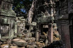 Rovine nel wat di ankor, Cambogia immagine stock
