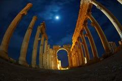 Rovine in Palmyra entro la notte Immagini Stock Libere da Diritti