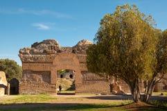 Rovine romane ed albero alla villa Adriana Immagine Stock