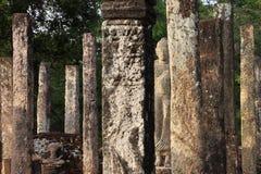 Rovine rotonde del tempio di Sarmisegetuza Regia Immagine Stock Libera da Diritti