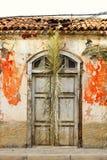 Rovini con il tetto crollato una foglia di palma come decorazione Fotografia Stock