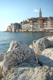 Rovinj in the afternoon Royalty Free Stock Photos