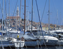 Rovinj, Croatia. Yachts in port, Rovinj, Croatia stock image
