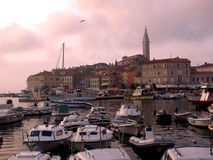 Rovinj harbour sunset Royalty Free Stock Image